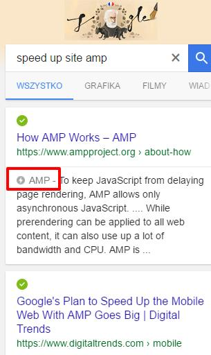speed up site amp Szukaj w Google